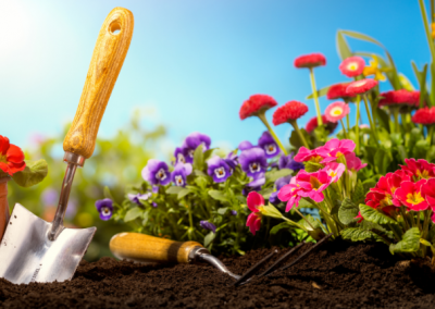 Planting a Flowerbed